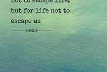 Travel...περιπέτεια ζωής