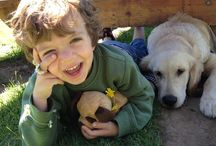 """Dogs and children / The magical connection between dogs and children, which is the focus of the dog picture book, """"Bash And Lucy Fetch Confidence."""" at www.BashAndLucy.com #kids #dogs #dog facts for kids"""