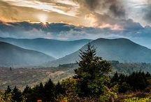 Asheville / Dogwood Alliance loves our hometown of Asheville, NC!