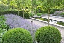 NL gardens