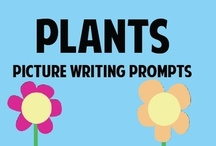 Picture Prompts for Writing / by Pinning Teacher