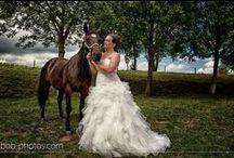 Dieren op je bruiloft