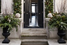 Curb Appeal  / Do judge a house by it's curb appeal / by Tracey S