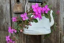 Jardim / O segredo é não correr atrás das borboletas... É cuidar do jardim para que elas venham até você  Mario Quintana / by Madalena Valcanaia
