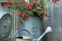 Outdoor decor... :) / A garden for our new home :)