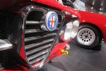 Alfa Romeo / For Alfisti!!
