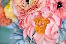 flowers. / by Ally Spjut