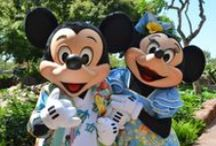 Disney Vacation / by C W
