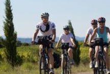 Bike & Wine Tours / Cycling through wine country anyone? / by Winerist
