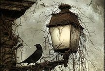 Gothic / Dark,and gothic