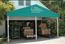 Customer Service & Shipping at PDN / The PDN staff and the progression of your plant from our greenhouses to your front door.
