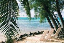 travel: cayman islands!