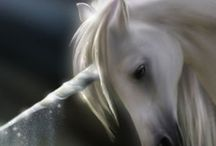 Unicorn / Anything to do with unicorns