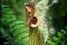 fairy magic world