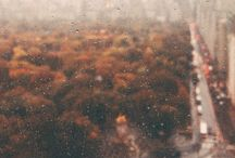 Fallove