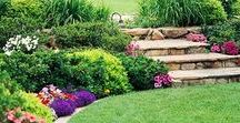 Stoney Garden