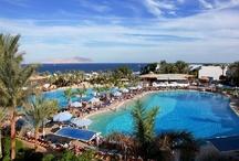 Sharm El Sheikh, Tunesie, Hotels en sfeer foto's / Van een bescheiden Bedoeïenennederzetting op het zuidelijke puntje van de Sinaïwoestijn is Sharm el Sheik uitgegroeid tot dé badplaats aan de Rode Zee. Hotels en Resorts, fraaie stranden, prachtige, beschutte baaien. De Sinaïwoestijn in de rug, het glasheldere zeewater aan de voeten en de gastvrije luxe rondom is het zeker een van de mooiste plekjes aan de Rode Zee