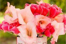 CARAS Flowers