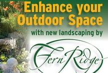 Upcoming events & general information / Useful tidbits for the home gardener or professional.