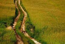 droga leśna polna - dirt forest road