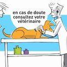 Santé de mon chien / de mon chat