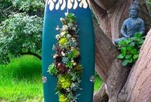 Coastal Container Gardening / by Salty Roe