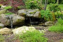 Design Inspiration:  Water Features / Water Falls, Bubbling Rocks & Fountains