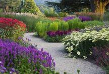 Design Inspiration:  Planting Beds
