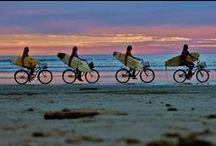 Bicicletas & Surf Boards / #bike #bicycle #surf