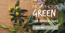 MORPHOSIS GREEN