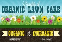 Organic Lawn Care / Safer® Brand offers a line of organic lawn care products to keep your lawn thick, lush and green all year long. Don't expose your family to synthetic chemicals. Safer® Brand is the leader in organic lawn fertilizer brands.