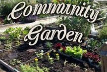 Getting Down and Dirty! / Take a look at our Home Farmer Community Garden! Then show us yours!
