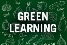The Garden is Your Classroom! / Some tips for parents and teachers to get the kiddies exposed to the wonderful world of gardening!