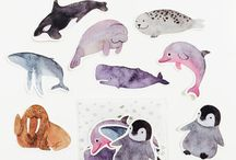 Animals - FISH / Marine life / Sea creatures