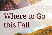 Fall Travel / This fall, travel to see your people. Book Direct for the lowest price guaranteed.
