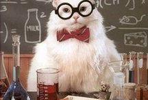 Geek since 1980