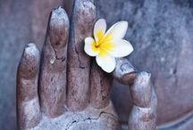 Sacred Hands & Feet - Ιερά άκρα / Απεικονίσεις άκρων που συσχετίζονται με αρχαίες μορφές της ρεφλεξολογίας.