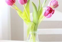 Frühling DIY & Basteln / Pastellige DIYs für den Frühling: Deko für die Wohnung und den Balkon. Natürlich dürfen auch Tulpen und Frühlingsblumen nicht fehlen. Ostern basteln und Dekoration.