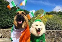 #Events and #Festivals in #Ireland /  Events, Festivals etc we think are worth a mention.