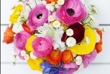 Flowers! we lalalove / by tin&liz lalalove