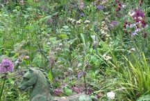 BUTTER WAKEFIELD GARDEN DESIGN SMALL GARDEN IN NOTTING HILL / a small notting hill garden
