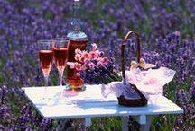 outdoor dining & garden