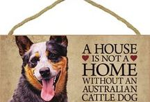 Cattle dogs!!! ~ Heelers!!! / by m goodwin