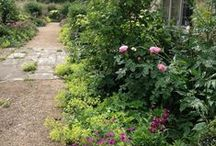 GARDEN IN DORSET / A country setting in beautiful Dorset, big long borders, heavenly views, created with a dear dear friend