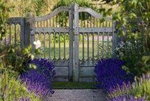 Jardin * Garden