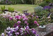 giardino / idee giardinaggio