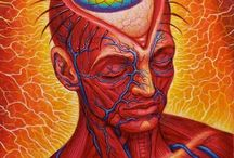 Visionary Art of the Inner Landscape / Pigments of Heaven. Entheogenic to Jazz In-spired art from the inner eye. Pineal perception and psychedelic pop. A lot of Alex grey here and traditional ayahuasca dmt insights