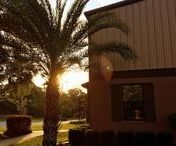 Our Headquarters / Based in (usually) sunny Ocala, Florida!
