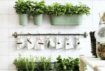Bringing the Outside In / Tips & ideas for bringing the outside into your home