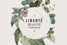 •••LE FRANÇAIS••• / apprendre le français